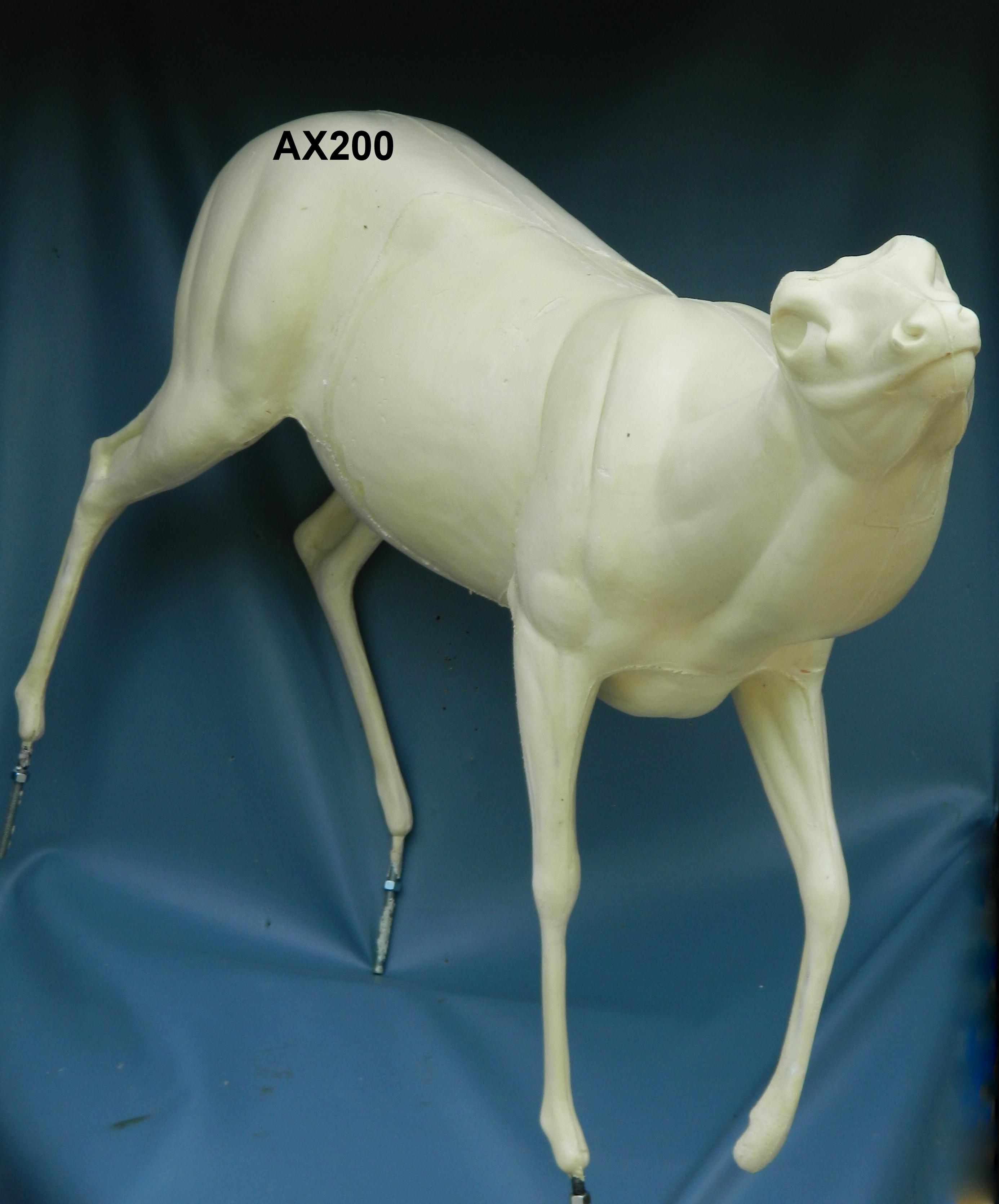 AX200